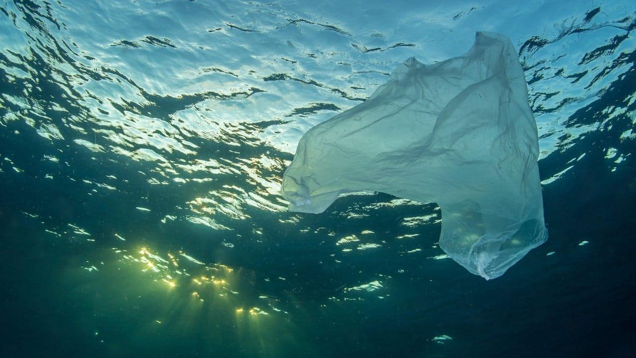 Deniz Plastiklerinin Temizlenmesi
