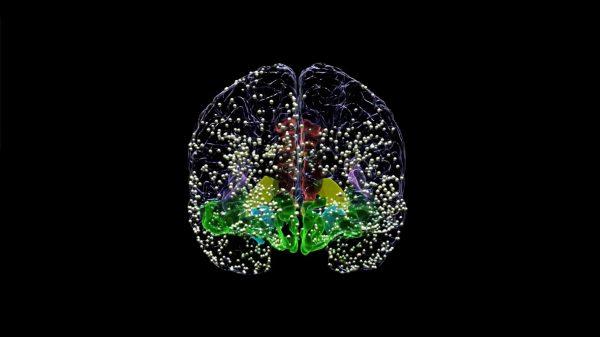 Kişiselleştirilmiş Beyin Stimülasyonu