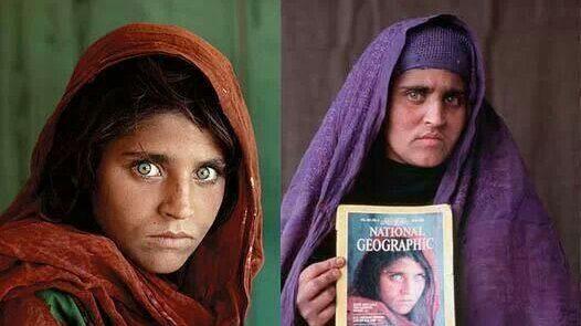 afganlı kız, sharbat gula.