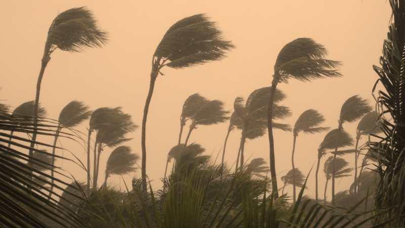 Nor'easters fırtınası nedir