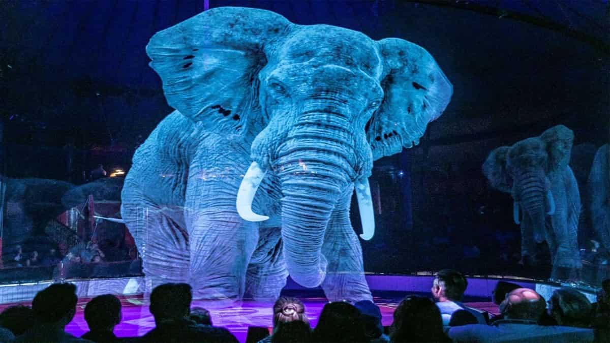 VR Teknolojisi Hayvanları Kalabalığı Eğlendirmeye Zorlamadan Sirkleri Canlı Tutabilir