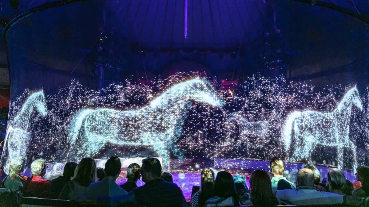 VR teknolojisi, Sirk Hayvanlarını Kurtarabilir