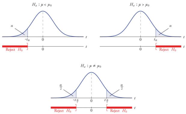 İstatistiksel Testin Amacı
