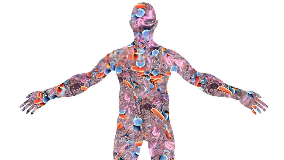 Bağırsak Bakterileri Mikrobiyomlar Nedir